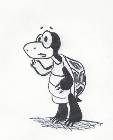 confused turtle