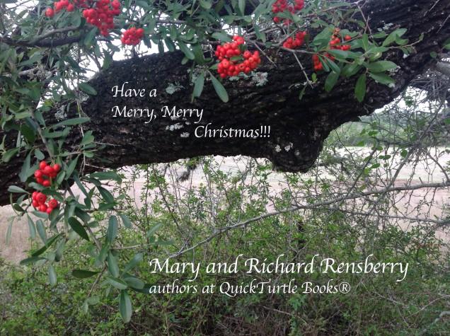 Mery Christmas 2015