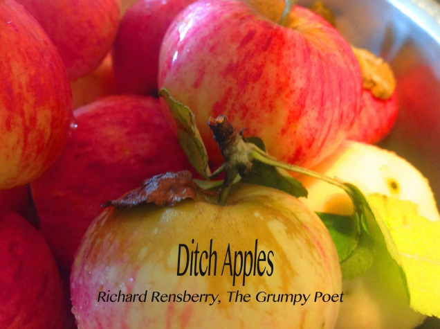 ditch-apples_edited-1