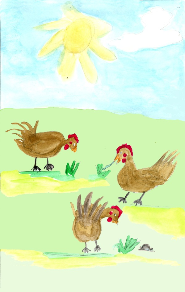Page 6 Chickens