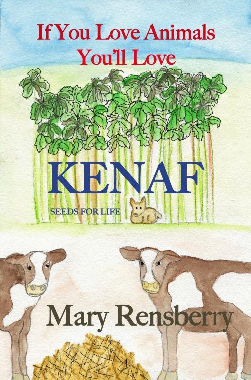 Kenaf Ad 3